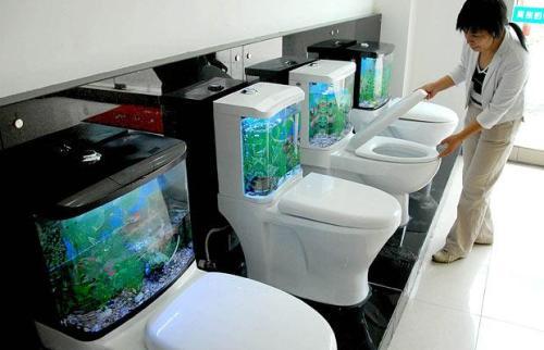 fish-tank-toilets_1107093i
